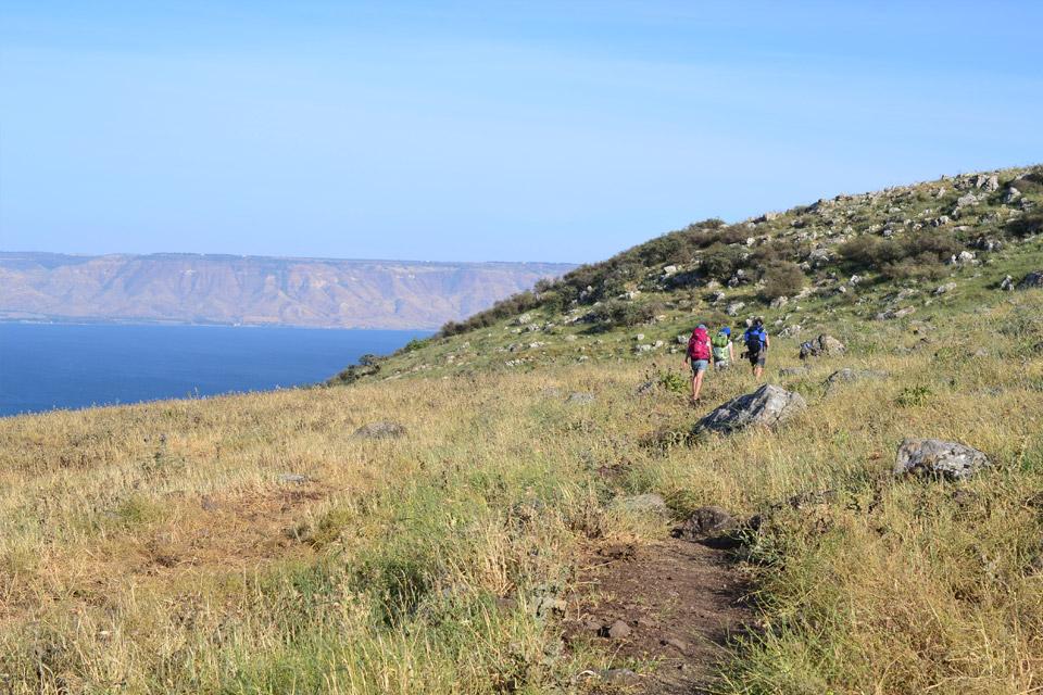 The Jesus Trail